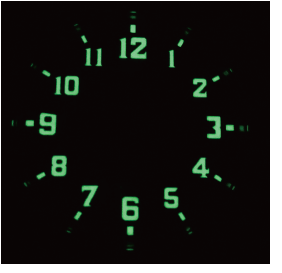 C3(Day color-Light Green/Brightness-Green)